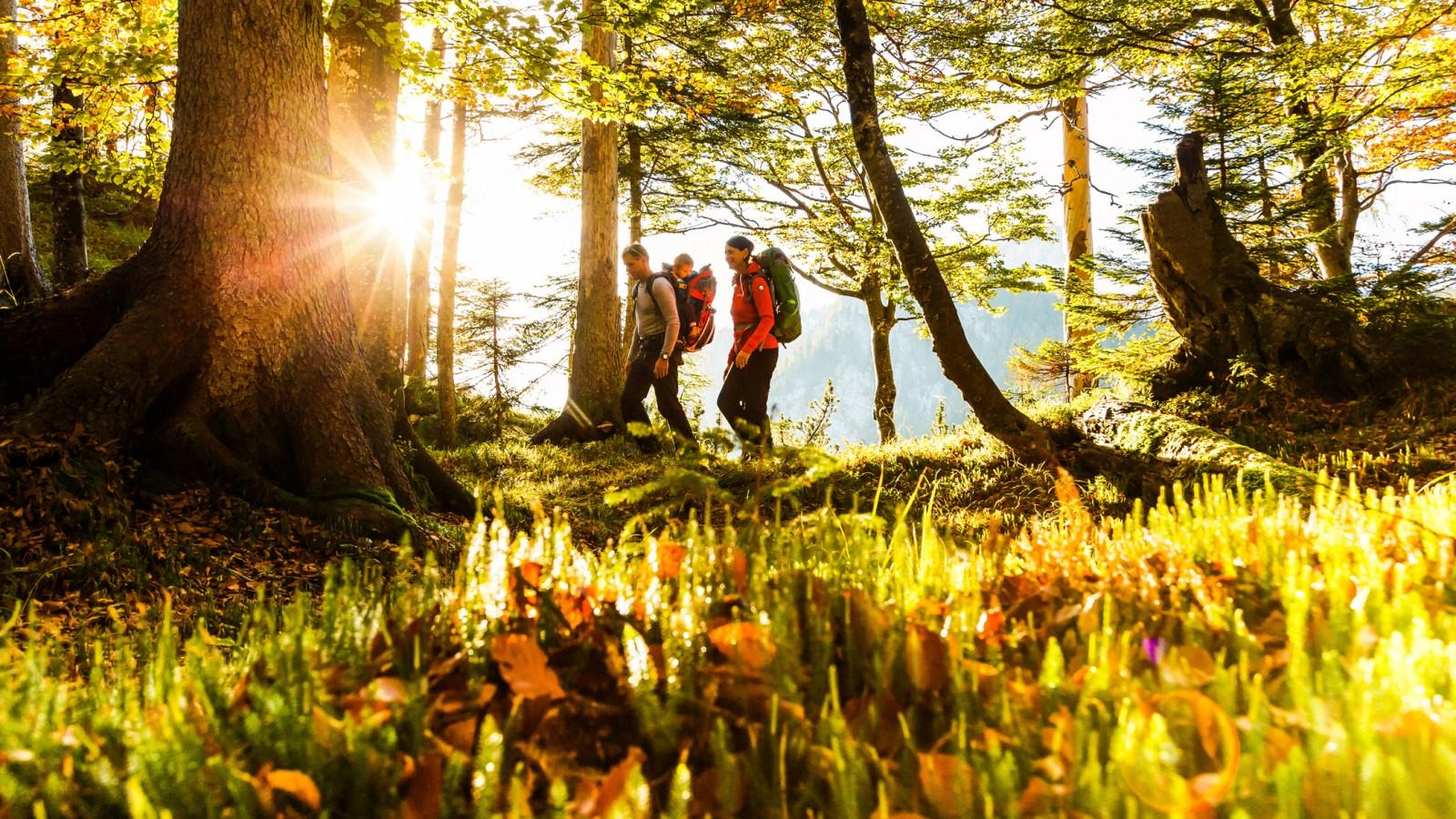 HELDs Vitalhotel | Ruhpolding Wandern